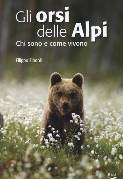 Gli orsi delle Alpi di Filippo Zibordi (Blu Edizioni)